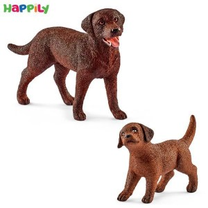 ست سگ و توله سگ لابرادر رتریور